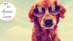 Summer Activities for Teenagers The Animal Lover