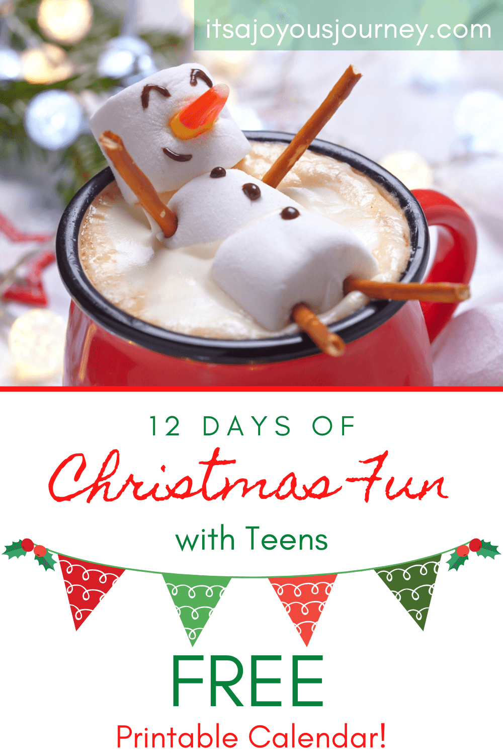 12 Days of Christmas Fun Ideas for Teenagers